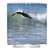 Pelican At Playa Grande Shower Curtain
