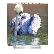 Pelican Blue Shower Curtain