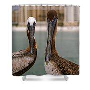 Pelican Couple Shower Curtain