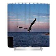 Pelican Flight Hatteras 2/11 Shower Curtain