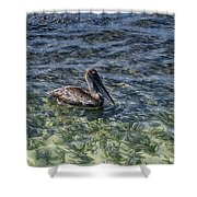 Pelican Floater Shower Curtain