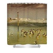 Pelican Haven Shower Curtain
