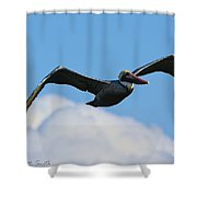 Pelican In Flight I Shower Curtain