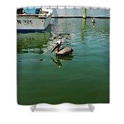 Pelican John 3/16 Boat Shower Curtain