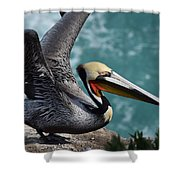 Pelican Lift Off Shower Curtain