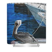 Pelican On A Boat Shower Curtain