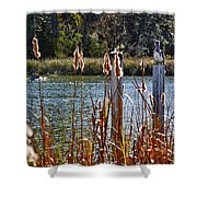 Pelican On A Stick Shower Curtain