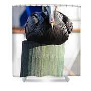 Pelican On Piling Shower Curtain