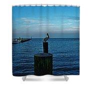 Pelican Pamlico Sound Hatteras 2/11 Shower Curtain