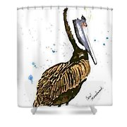 Pelican Pete Shower Curtain