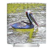 Pelican Reflections Shower Curtain