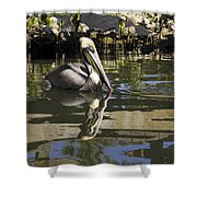 Pelican Reflected Shower Curtain