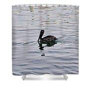 Pelican Swim Shower Curtain