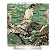 Pelican Take Off Two Shower Curtain