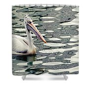 Pelican With Abstract Water Reflections I Shower Curtain