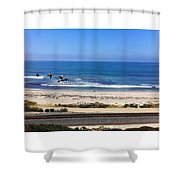 Pelicans And Rider Shower Curtain