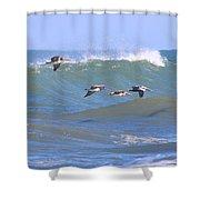 Pelicans Flying Between Waves 3788 Shower Curtain