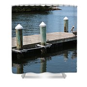 Pelicans On Dock In Florida Shower Curtain