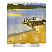 Pelicans On The Shore Shower Curtain
