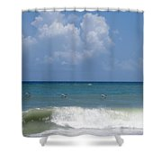Pelicans Over The Ocean Shower Curtain