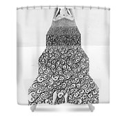 Pen And Ink Staircase Shower Curtain