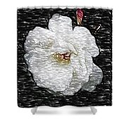 Pencil A Rose Shower Curtain