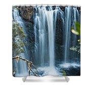 Pencil Pine Falls Cradle Mountain Shower Curtain