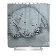 Pencil Puppy Shower Curtain