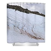 Penguin Highways... Shower Curtain