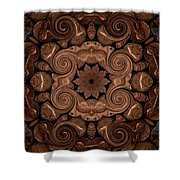 Pennies From Heaven Shower Curtain