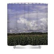 Pennsylvania Cornfield Shower Curtain