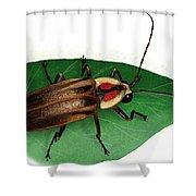 Pennsylvania Firefly Shower Curtain