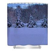 Pennsylvania Snowy Wonderland Shower Curtain