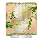 Penny Postcard Cheerful Shower Curtain