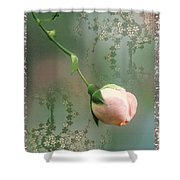 Penny Postcard Chinoiserie Shower Curtain