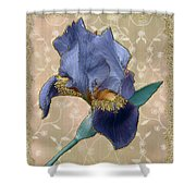 Penny Postcard Florentine Shower Curtain