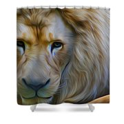 Pensive  Shower Curtain