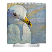 Pensive Seagull Shower Curtain