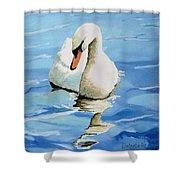 Pensive Swan Shower Curtain