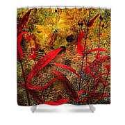 Penstemon Abstract 5 Shower Curtain