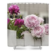 Peonies On A Picket Shower Curtain