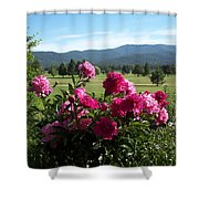 Peonies Please Shower Curtain