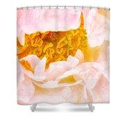 Peony Flower Shower Curtain