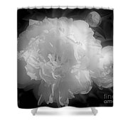 Peony Flower Phases Black And White Contrast Shower Curtain