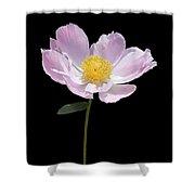 Peony Flower Portrait Shower Curtain