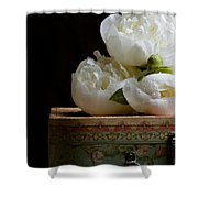 Peony Flowers On Old Hat Box Shower Curtain
