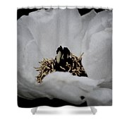 Peony Lovely Shower Curtain