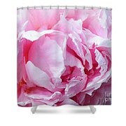 Peony Punch  Shower Curtain