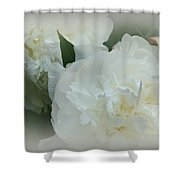 Peony Soft Shower Curtain