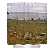 People Lined Up To Catch Capelin On The Shore Of Middle Cove-nl Shower Curtain